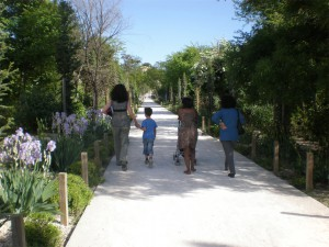 Zac Ov-parc P4270147