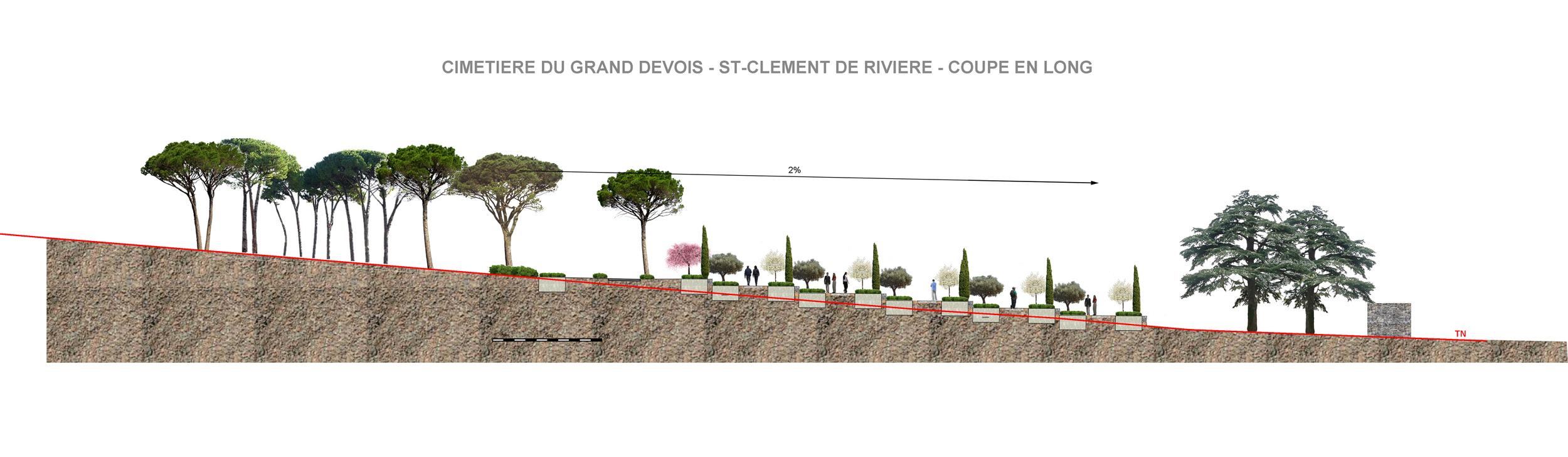 coupe totale site St Clément